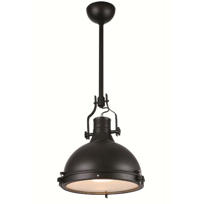 Wamblee 1-Light Mini Pendant