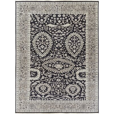 Karlee Black/Gray Area Rug Rug Size: Rectangle 2 x 3