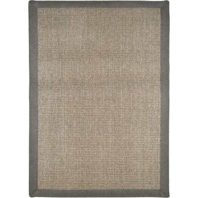 Cheyanne Border Gray Area Rug Rug Size: Rectangle 23 x 37