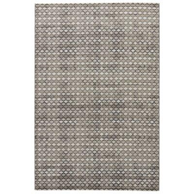 Geneva Gray Area Rug Rug Size: 2 x 3