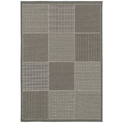 Philomene Gray Indoor/Outdoor Area Rug Rug Size: 53 x 76
