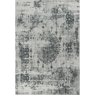 Eve Antiquities Gray Area Rug Rug Size: 53 x 77