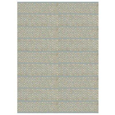 Lenore Aqua Horizon Rug Rug Size: 33 x 53