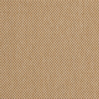 Manassas Natural/Gold Indoor/Outdoor Rug Rug Size: Square 67