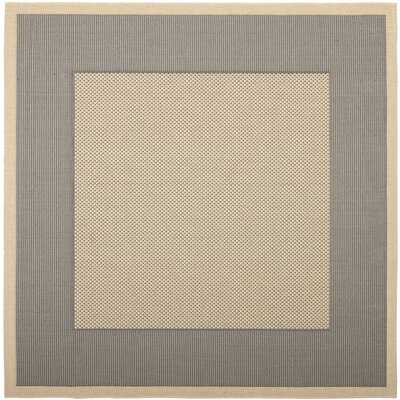 Manassas Grey/Cream Indoor/Outdoor Rug Rug Size: Square 710 x 710
