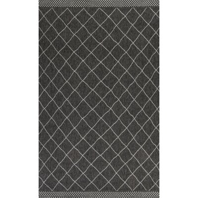 Paramus Rustico Charcoal Indoor/Outdoor Area Rug Rug Size: 5 x 77