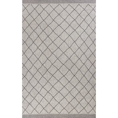 Loren Rustico Gray Indoor/Outdoor Area Rug Rug Size: 77 x 1010