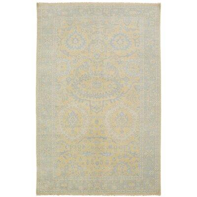 Karlee Yellow/Gray Area Rug Rug Size: 2' x 3'