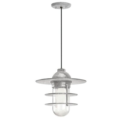 1-Light Pendant Finish: Galvanized