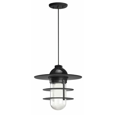 1-Light Pendant Finish: Black