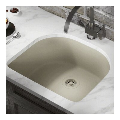 24.75 x 22 Single Undermount Kitchen Sink Finish: Slate