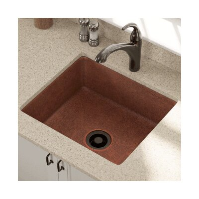 25 x 22 Single Undermount Kitchen Sink with Drain Assembly