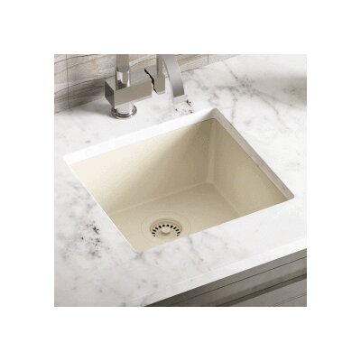 17.75 x 16.88 Single Bowl AstraGranite Kitchen Sink Finish: Beige