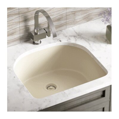 24.75 x 22 Single Undermount Kitchen Sink Finish: Beige