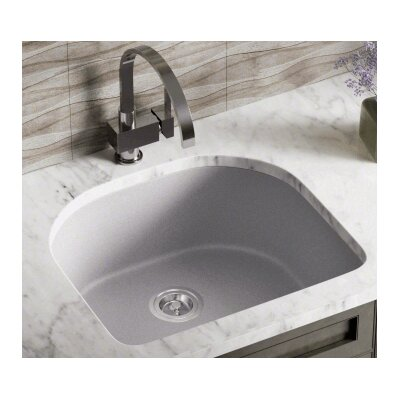 24.75 x 22 Single Undermount Kitchen Sink Finish: Silver