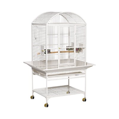 Chiquita Bird Cage with Casters Color: Pearl White, Top: Dome