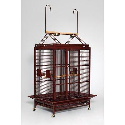 Grande Play Top Bird Cage Color: Ruby