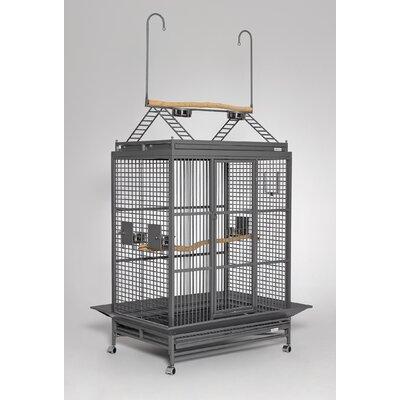 Grande Play Top Bird Cage Color: Platinum
