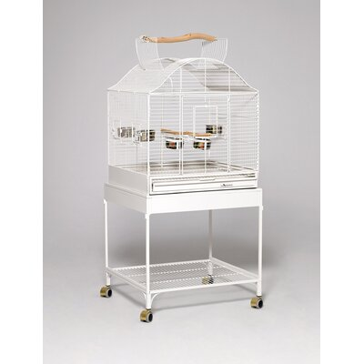 Prot�g� Bird Cage Color: Pearl White