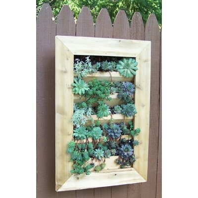 Barharborcedar Wood Wall Planter