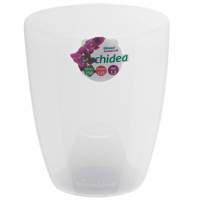 "Orchidea Plastic Pot Planter Color: Transparent, Size: 5.9"" H x 4.9"" W x 4.9"" D ORH49TRA"