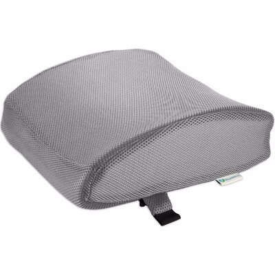 Lumbar Back Support Color: Gray
