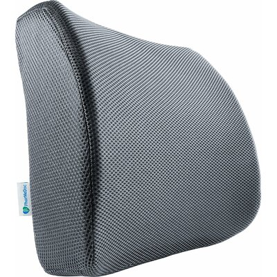 Lumbar Support Pillow Color: Gray