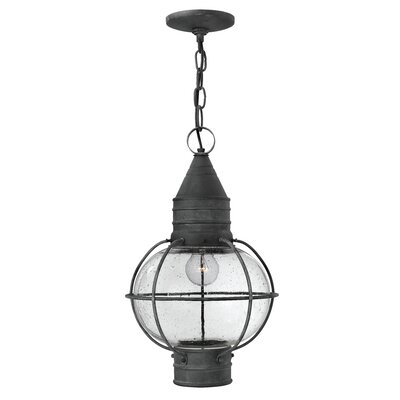 Cape Cod 1-Light Outdoor Hanging Lantern Bulb Type: 15W LED
