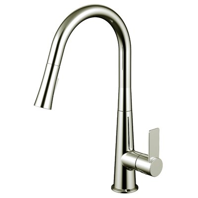 Single Handle Pull Out Kitchen Faucet with 2 Spray Settings Finish: Brushed Nickel
