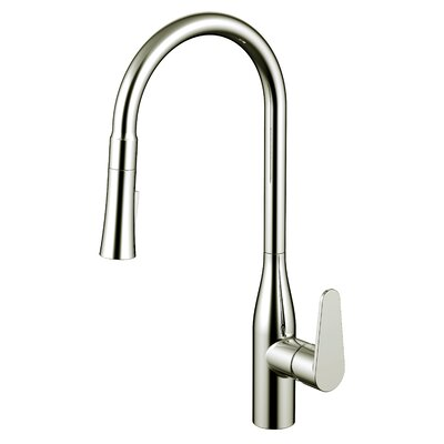Pull Out Single Handle Kitchen Faucet Finish: Brushed Nickel
