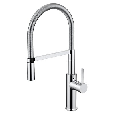 Daweier Pull Out Single Handle Kitchen Faucet Finish: Chrome