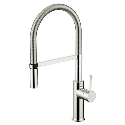 Daweier Single Handle Pull Out Kitchen Faucet Finish: Brushed Nickel