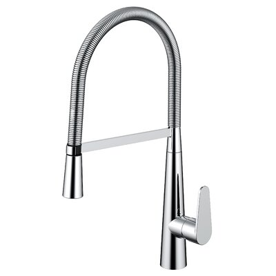 Daweier Single Handle Pull Out Kitchen Faucet Finish: Chrome