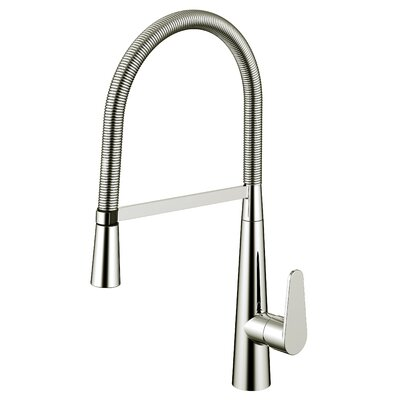 Daweier Pull Out Single Handle Kitchen Faucet Finish: Brushed Nickel