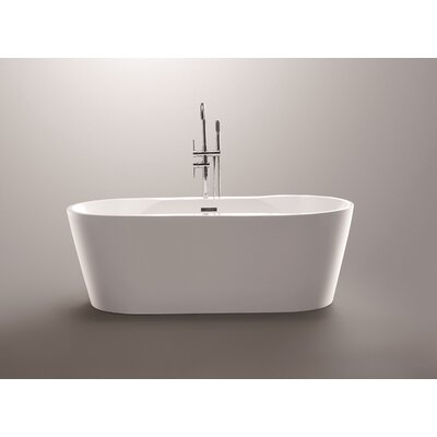 67 x 31.5 Freestanding Soaking Bathtub