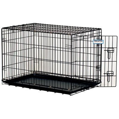"Precision Pet ProValu Single-Door Dog Crate in Black - Size: Medium (30"" L x 19"" W x 21"" H) at Sears.com"