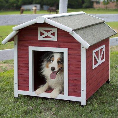 Old Barn Dog House