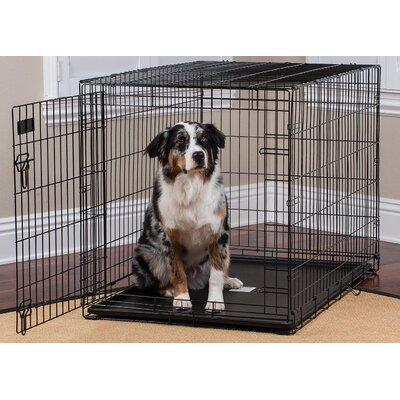 Pet Crate Size: 23.50 H x 3.74 W x 37.24 L