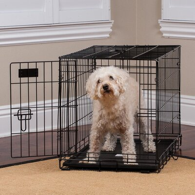 Pet Crate Size: 19.88 H x 3.74 W x 30.98 L
