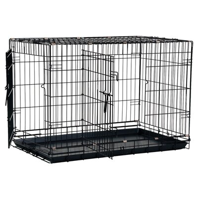 Great Crate 2 Door Dog Crate Size: Large (31 H x 28 W x 42 L), Color: Black