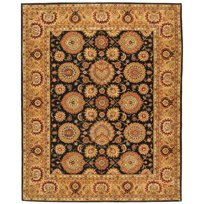 Persian Court Navy/Gold Area Rug Rug Size: Rectangle 4 x 6