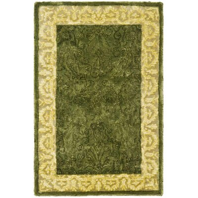 Silk Road Spruce/Ivory Area Rug Rug Size: Rectangle 2 x 3
