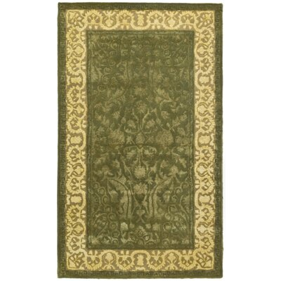 Silk Road Spruce/Ivory Area Rug Rug Size: 3 x 5