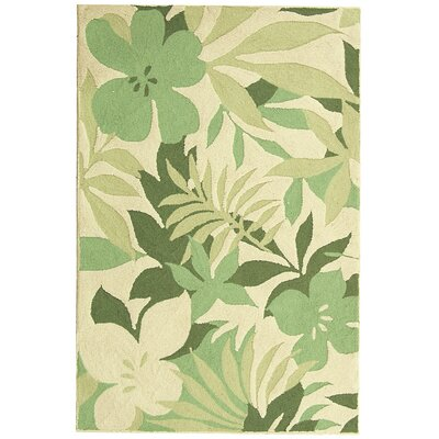 Berkeley Beige/Green Rug Rug Size: 3'9 x 5'9 Rectangle image