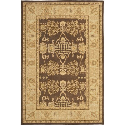 Bergama Brown/Green Area Rug Rug Size: Rectangle 6 x 9