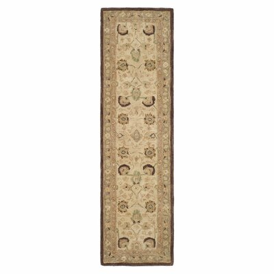 Anatolia Ivory/Brown Area Rug Rug Size: Runner 23 x 12