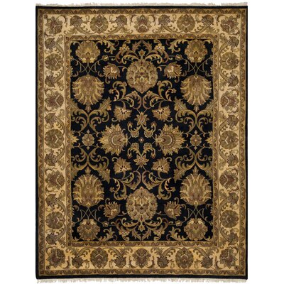 Jaipur Black / Ivory Rug Rug Size: 10 x 14