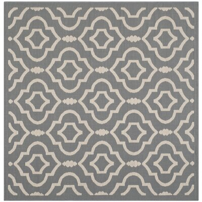 Octavius Anthracite/Beige Indoor/Outdoor Area Rug Rug Size: Square 5'3