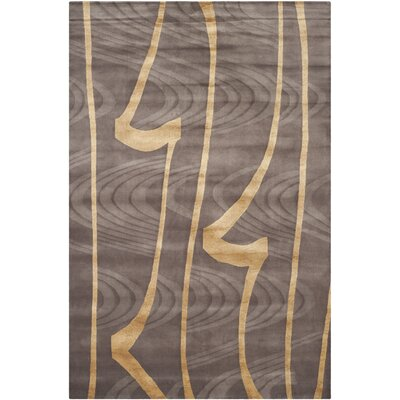 Tibetan Brown / Gold Rug Rug Size: 6 x 9