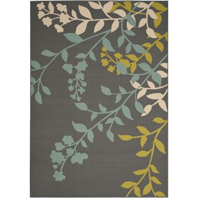 Hampton Dark Grey Outdoor Area Rug Rug Size: 8 x 11